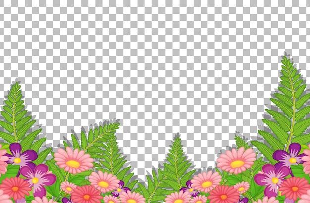 Roze bloemen met bladeren op transparant