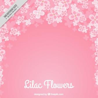 Roze bloemrijke achtergrond