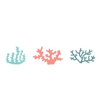 Roze en blauwe koralen op een witte achtergrond