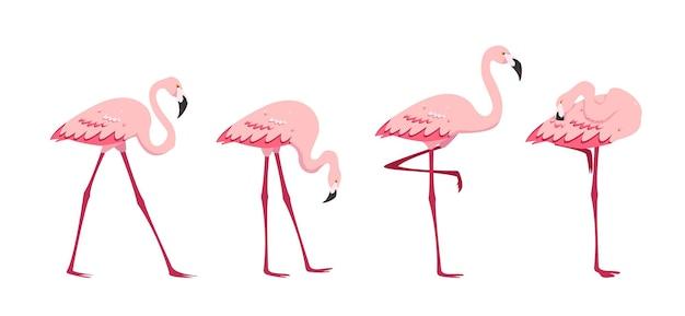 Roze flamingo-pictogrammen instellen staande flamingo's in verschillende poses