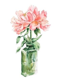 Roze pioen in groene glazen fles, aquarel schets, botanische illustratie