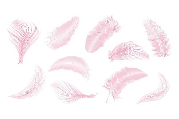Roze veren collectie ingesteld op een witte achtergrond.
