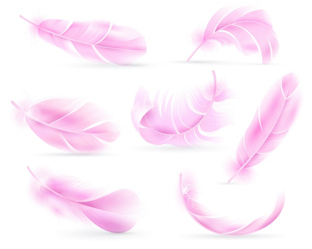 Roze veren. vogel- of engelenveer, vogelkleed. vliegende pluisjes, vallende donzige gedraaide flamingoveren. realistische reeks