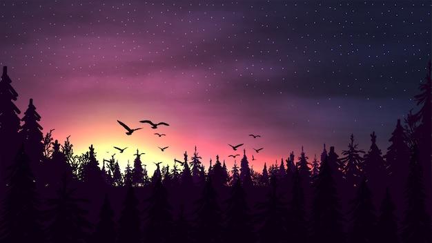 Roze zonsondergang in een dennenbos met een silhouet van bomen, sterrenhemel en vogels stijgende boven de boomtoppen