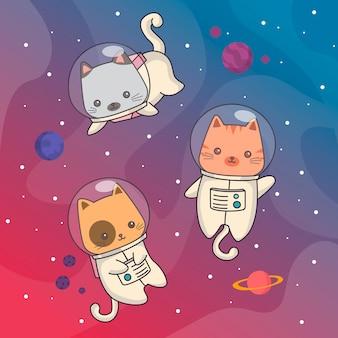 Ruimte katten