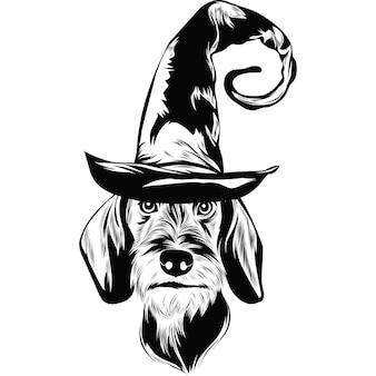 Ruwharige teckelhond in heksenhoed voor halloween