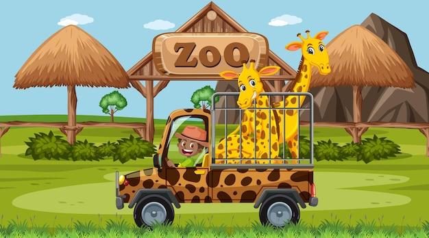 Safariscène overdag met girafgroep op pick-uptruck