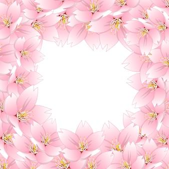 Sakura cherry blossom border2