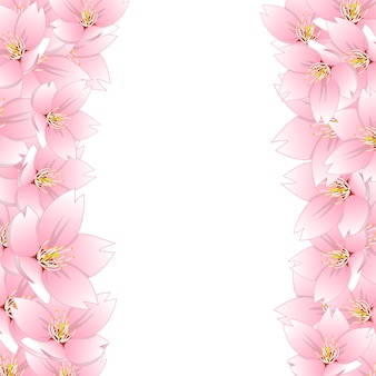 Sakura cherry blossom border