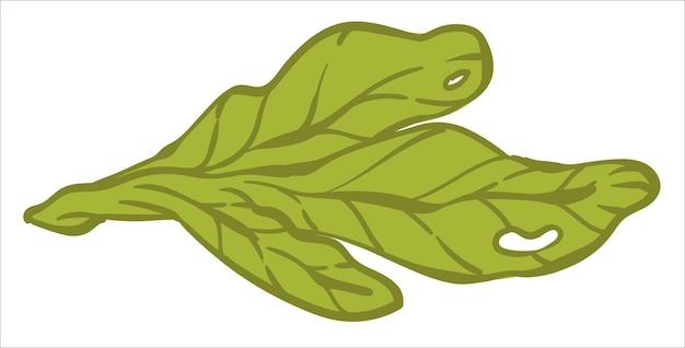 Salade laat groenten achter in winkel of markt vectorbeelden