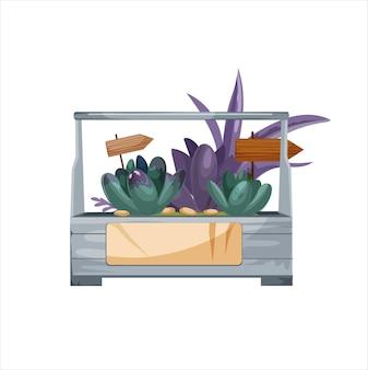 Sappig florarium geïsoleerd