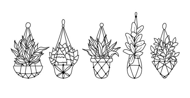 Sappige ficus hangende planten ingemaakte boho kamerplanten geïsoleerde clipart zwart-wit bloemen set