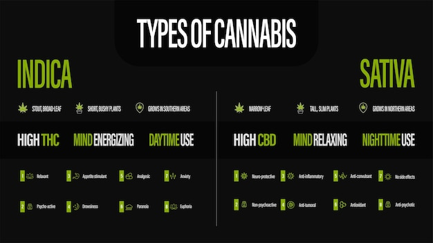 Sativa vs indica, zwarte informatieposter van soorten cannabis met infographic. Premium Vector