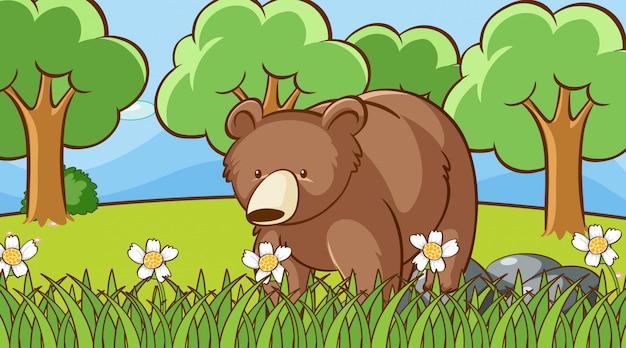 Scène met beer in de tuin
