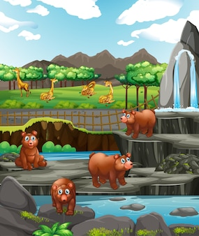Scène met beren en giraffen in de dierentuin