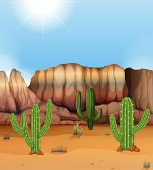 Scène met canion en cactus in de woestijn