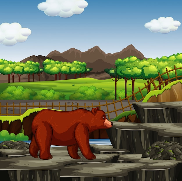 Scène met grizzly in de dierentuin
