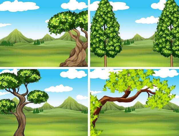 Scène met groen gras en bergen