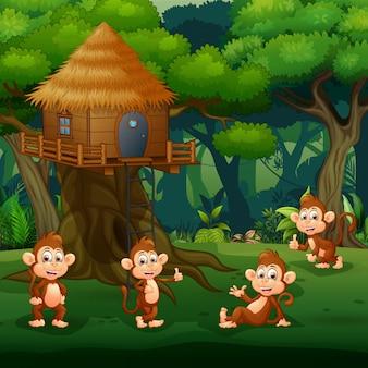 Scène met groep aap spelen bij boomhut