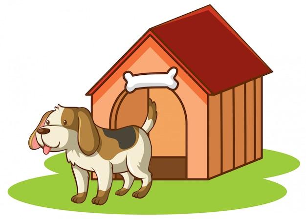 Scène met hondje door hondenhok