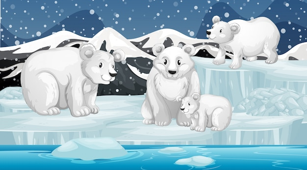 Scène met ijsberen op ijs