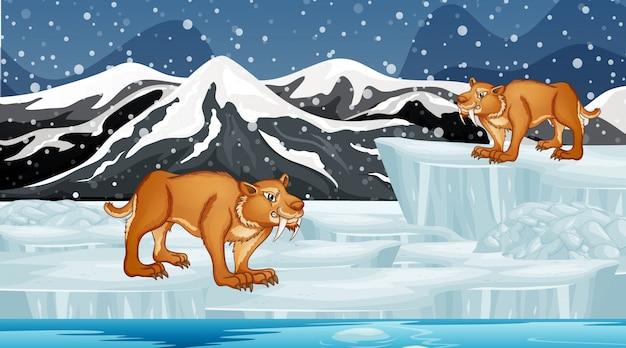 Scène met sabertooth op ijs