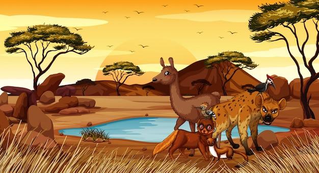 Scène met veel dieren in het veld