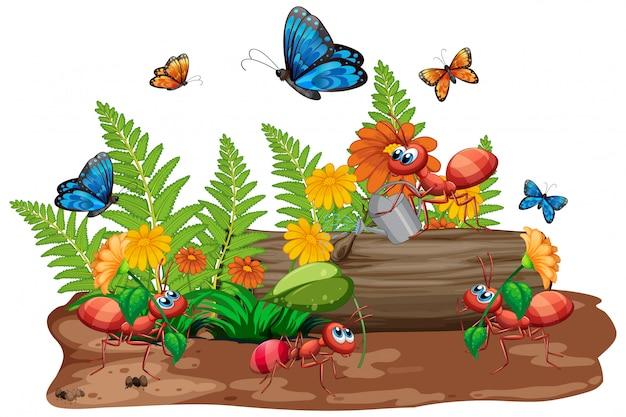 Scène met veel insecten in de tuin