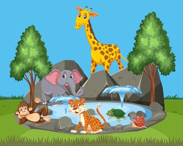 Scène met veel wilde dieren in het park