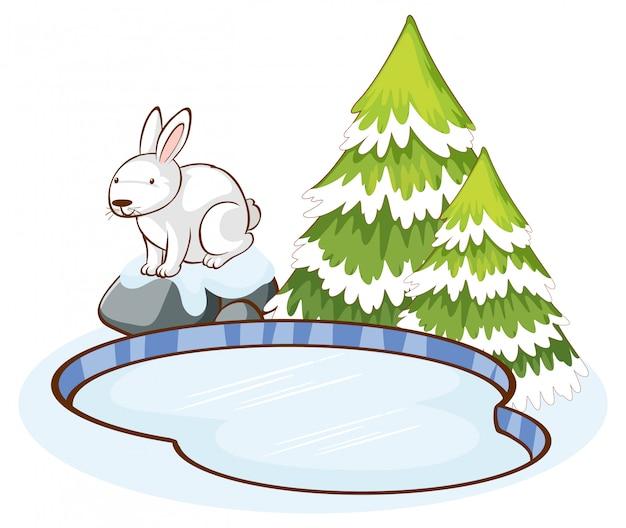 Scène met wit konijn in sneeuw