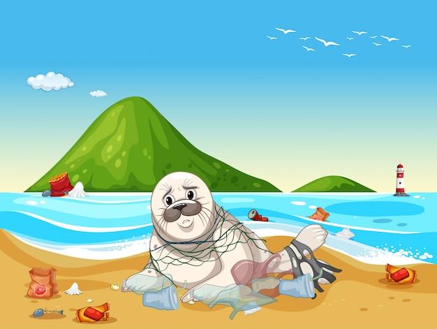Scène met zeehond en plastic afval op het strand