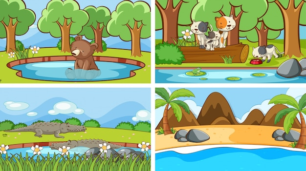 Scènes van dieren in het wild