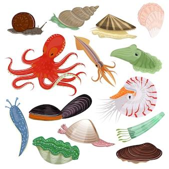 Schaaldieren zeedier octopus weekdieren tentakel en dierlijke karakter octopussen oesterslak in zee illustratie set zeevruchten inktvis en duivels geïsoleerd op witte achtergrond