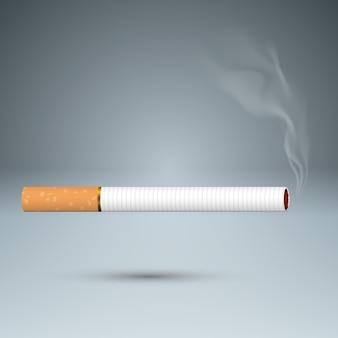 Schadelijke sigaret, adder, rook, zakelijke infographics.