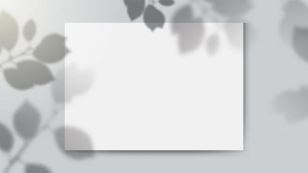 Schaduw overlay achtergrond met bladeren en leeg papier