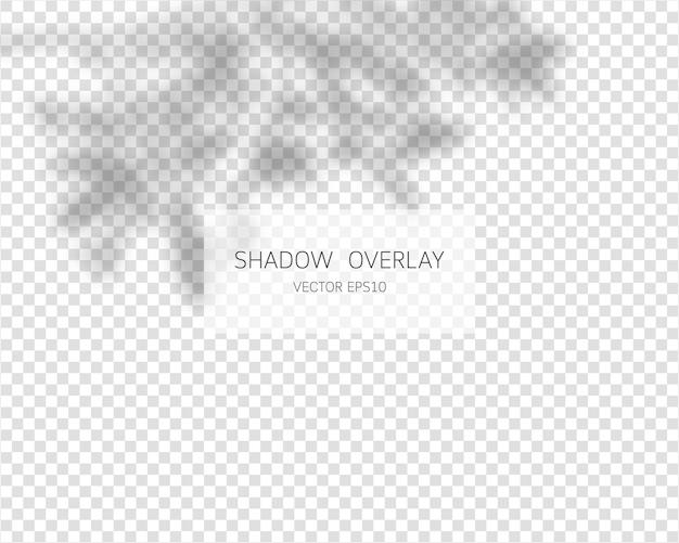 Schaduw-overlay-effect natuurlijke schaduwen geïsoleerd op transparante achtergrond