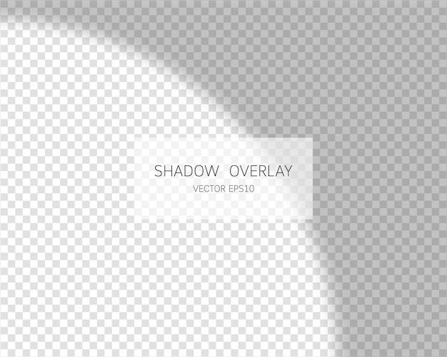 Schaduw-overlay-effect. natuurlijke schaduwen van venster geïsoleerd op transparant.