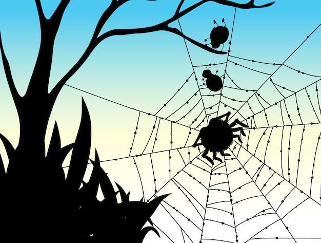 Schaduw van spinnenwebaard