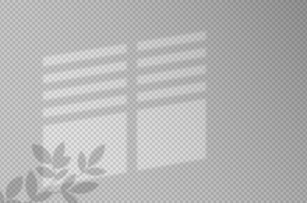 Schaduweffecten. schaduw en licht van het raam en de plant. reflectie van licht op de muur. transparante tinten voor uw ontwerp. illustratie.