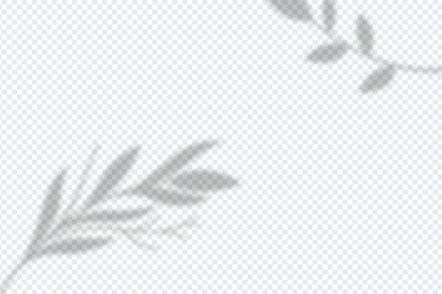 Schaduwen overlay-effect in transparante stijl