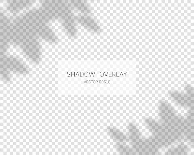 Schaduwoverlay-effect natuurlijke schaduwen geïsoleerd op transparante achtergrond vectorillustratie