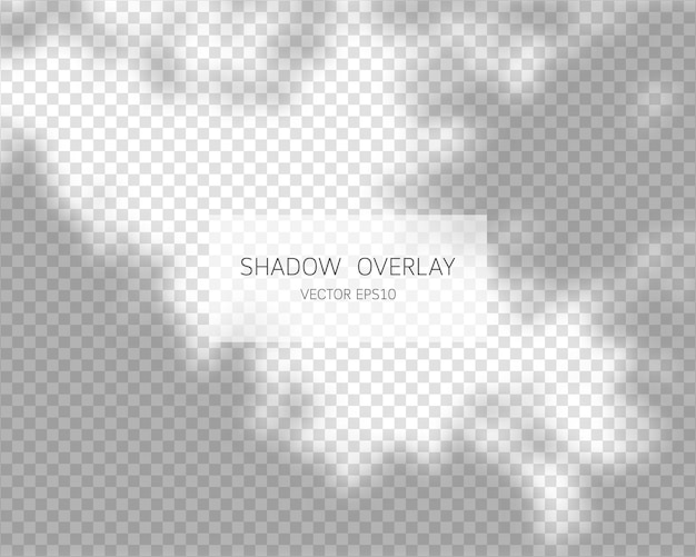 Schaduwoverlay-effect natuurlijke schaduwen geïsoleerd op transparante achtergrond