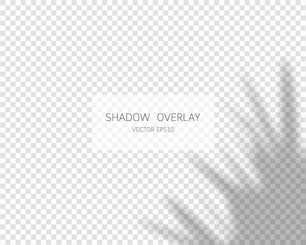 Schaduwoverlay-effect. natuurlijke schaduwen op transparante achtergrond. illustratie.