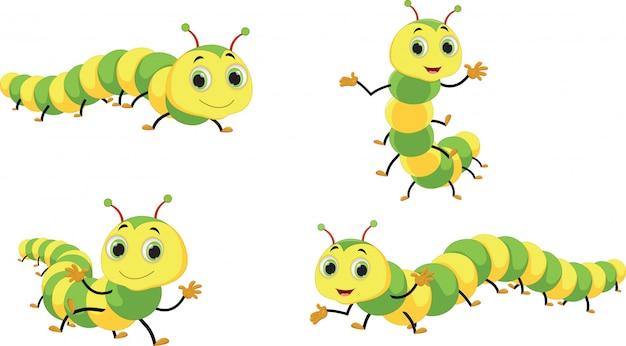Schattig caterpillar cartoon set