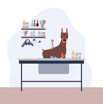 Schattig doberman hond huisdier karakter