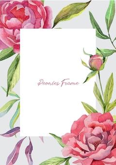 Schattig frame sjabloon met pioenrozen bloemen en knoppen