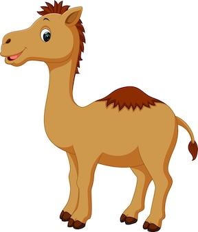 Schattig kameel cartoon