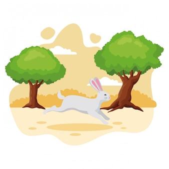 Schattig konijn huisdier cartoon
