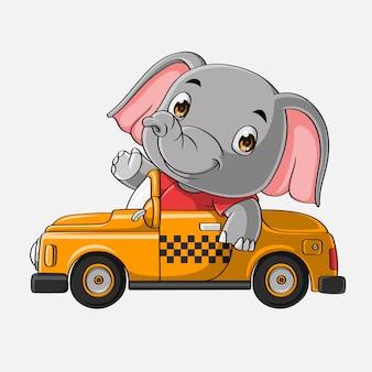 Schattig olifant rijden auto hand getrokken