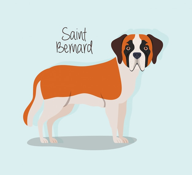 Schattig saint bernard hond huisdier karakter
